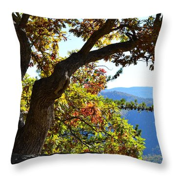 Basking In The Sunlight Throw Pillow