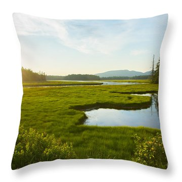 Bass Harbor Marsh At Dusk Throw Pillow