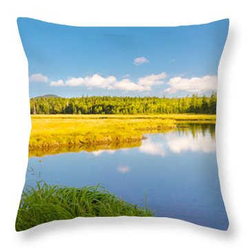 Bass Harbor Marsh Panorama Acadia National Park Photograph Throw Pillow