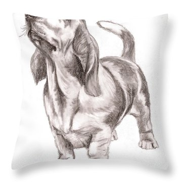 Basset Hound Dog Throw Pillow by Nan Wright