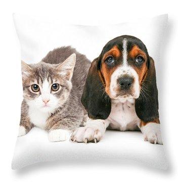 Basset Hound Puppy And Kitten Throw Pillow