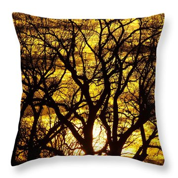 Bastrop Sunset Throw Pillow