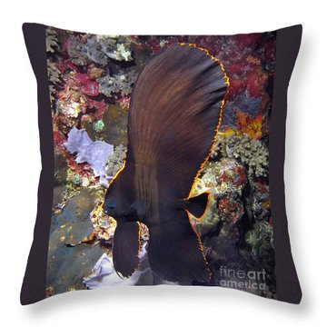 Bat Fish Throw Pillow by Sergey Lukashin