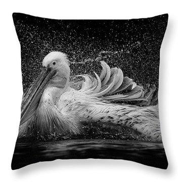 Bird Bath Throw Pillows