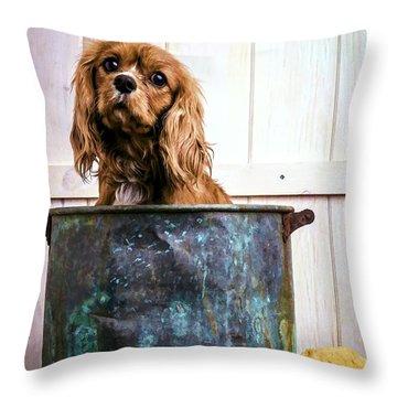 Bath Time - King Charles Spaniel Throw Pillow by Edward Fielding