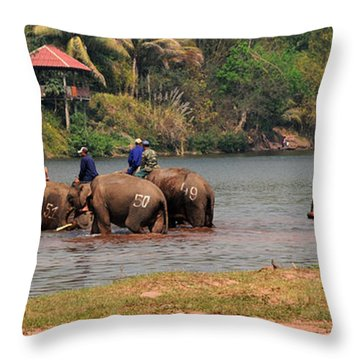 Bath Time Throw Pillow by Vivian Christopher