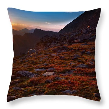 Bathing In Last Light Throw Pillow by Jim Garrison