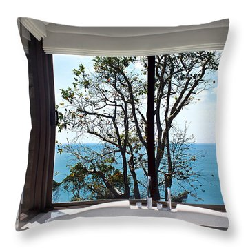 Bathroom With A View Throw Pillow