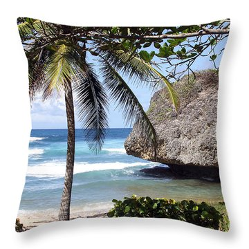 Bathsheba No11 Throw Pillow