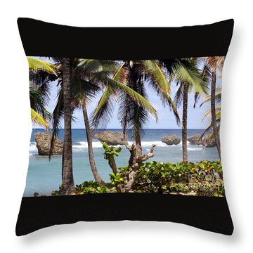 Bathsheba No7 Throw Pillow