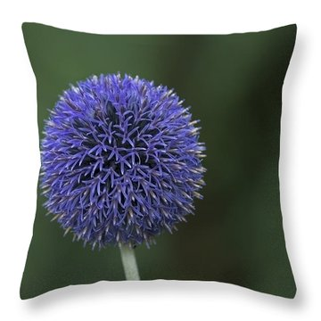 Bavarian Globe Thistle Throw Pillow