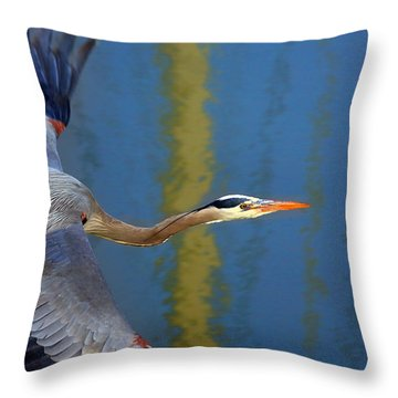 Bay Blue Heron Flight Throw Pillow by Robert Bynum
