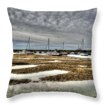 Bay Force Throw Pillow by Doc Braham