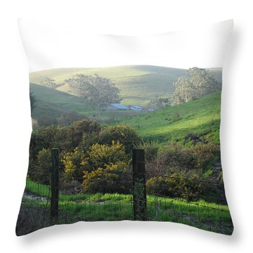 Bay Hill Road Throw Pillow
