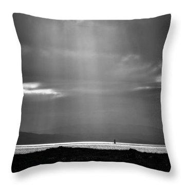 Bay Light Throw Pillow