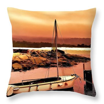 Throw Pillow featuring the photograph Bay Of Fires 5 by Wallaroo Images