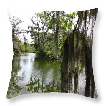 Throw Pillow featuring the photograph Bayou by Beth Vincent