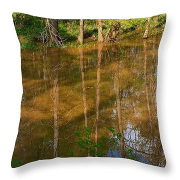 Bayou Reflections Throw Pillow by Connie Fox