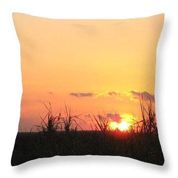 Throw Pillow featuring the photograph Bayou Sunset by John Glass