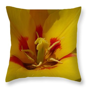 Be Drawn In - Signed Throw Pillow