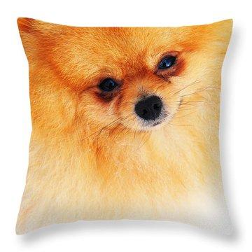 Be My Valentine Throw Pillow by Jenny Rainbow