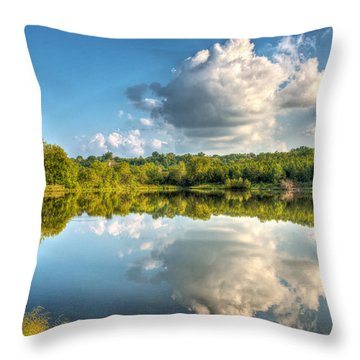 Be The Stream Of The Universe Throw Pillow by William Fields