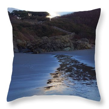 Throw Pillow featuring the photograph Beach Access by Adria Trail