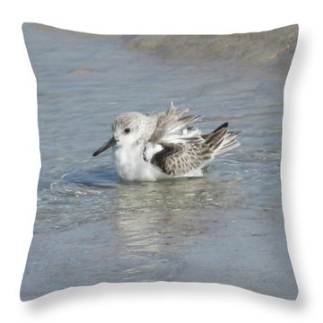 Beach Bird Bath 4 Throw Pillow by Ellen Meakin