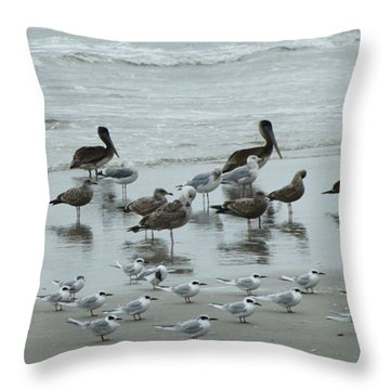 Beach Birds Throw Pillow by Judith Morris