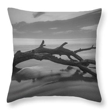 Beach Bones Throw Pillow by Debra and Dave Vanderlaan