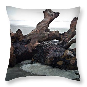 Beach Driftwood In Color Throw Pillow