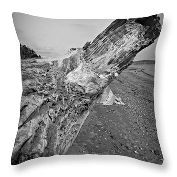 Beach Driftwood View Throw Pillow
