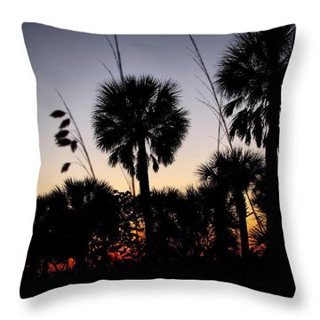 Beach Foliage At Sunset Throw Pillow by Phil Penne