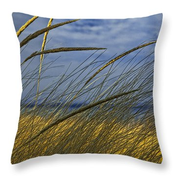 Beach Grass On A Sand Dune At Glen Arbor Michigan Throw Pillow