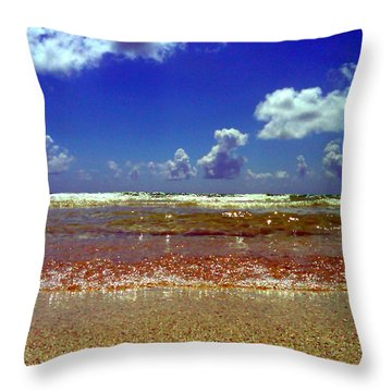 Beach Throw Pillow by J Anthony