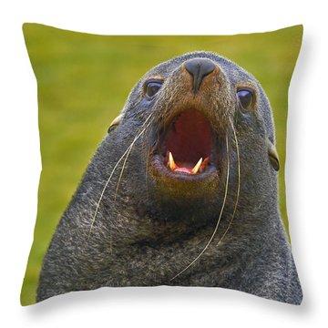 Beach Master Throw Pillow