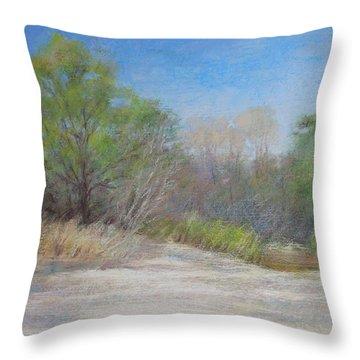 Beach  Throw Pillow by Nancy Stutes