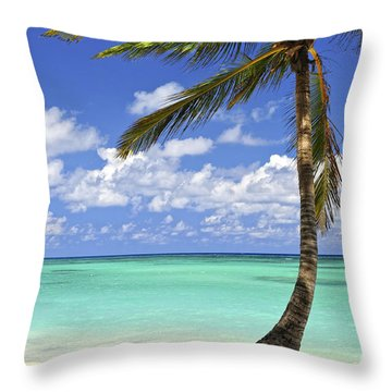 Beach Of A Tropical Island Throw Pillow by Elena Elisseeva
