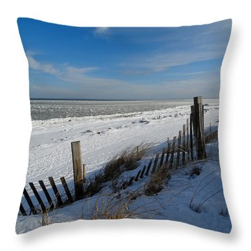 Beach On A Winter Morning Throw Pillow by Dianne Cowen