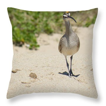 Throw Pillow featuring the photograph Beach Patrol by Brian Boyle