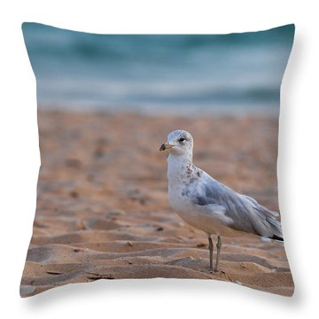Beach Patrol Throw Pillow