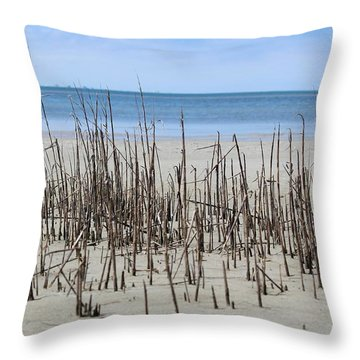 Throw Pillow featuring the photograph Beach Scene by Christy Pooschke