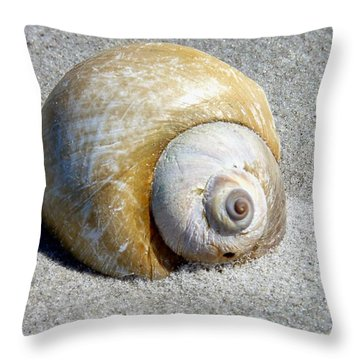 Throw Pillow featuring the photograph Beach Shell by Janice Drew