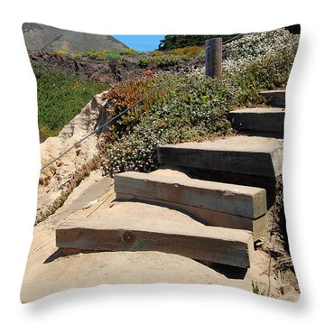 Throw Pillow featuring the photograph Beach Stairs Big Sur by Debra Thompson