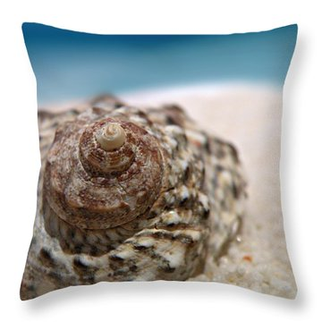 Beach Treasure Throw Pillow by Micki Findlay