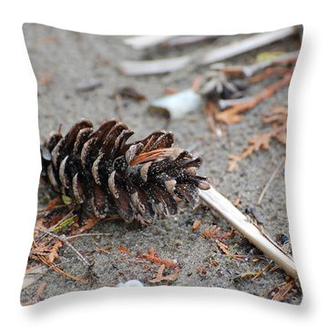 Throw Pillow featuring the photograph Beach Treasures by Bianca Nadeau
