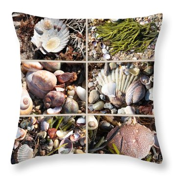 Beach Treasures Throw Pillow by Carol Groenen