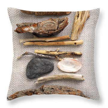 Beach Treasures Throw Pillow by Elena Elisseeva