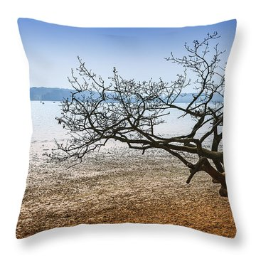Beach Tree Throw Pillow by Svetlana Sewell