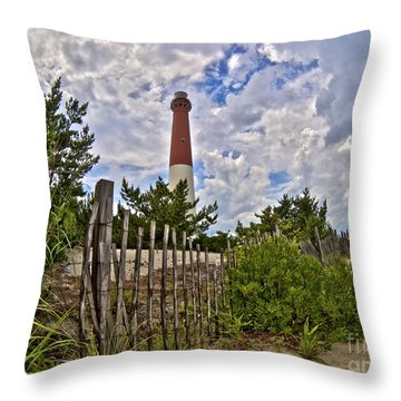 Beach View Of Barney Throw Pillow